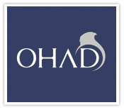 Ohad Co., web design